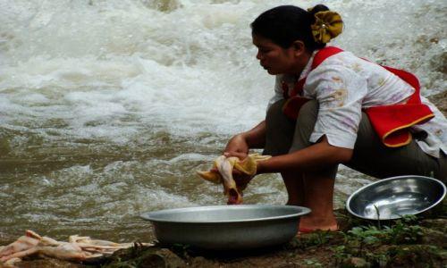 Zdjecie LAOS / - / okolice Luang Prabang / ciekawe zajęcie