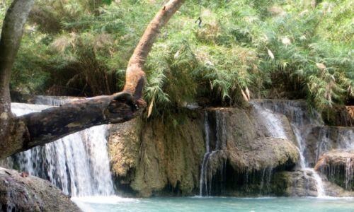 Zdjęcie LAOS / Louangphrabang / Wodospad Kuang Si / ......