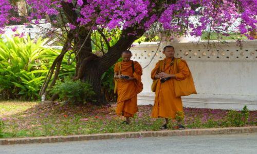 Zdjecie LAOS / .... / ... / Mnisi na pielgrzymce