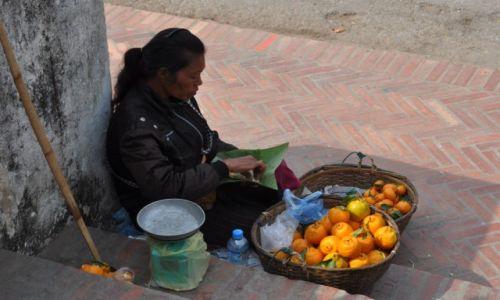 Zdjęcie LAOS / północny Laos / Louangphrabang / Pomarańczarka