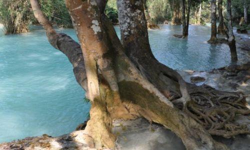 Zdjecie LAOS / północny Laos okolice Louangphrabang / Wodospad Kuang Si / Nad wodospadem