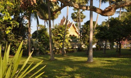Zdjęcie LAOS / północny Laos / Louangphrabang / Ogrody królewskie