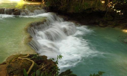 Zdjęcie LAOS / Laos północny / wodospady Kuang Si / Park Kuang Si