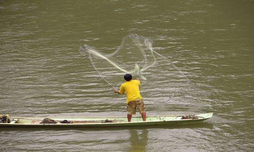 Zdjęcie LAOS / Laos północny / Luang Prabang / połów ryb na Nam Khan