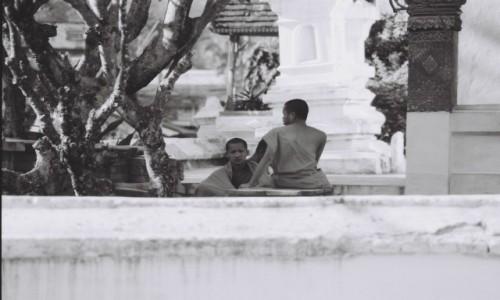 Zdjecie LAOS / LAOS / LAOS / mnisi Laos