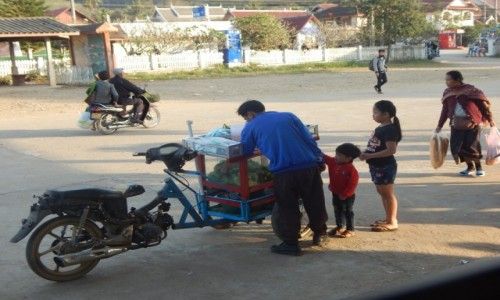 Zdjecie LAOS / Luang Prabang / Luang prabang / SKLEP Z MANGO