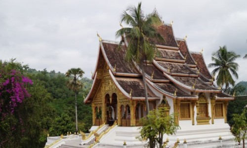 Zdjecie LAOS / Luang Prabang / Swiątynia Wat Xieng Thong / Swiątynny spokó
