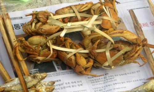 Zdjecie LAOS / . / na targu / kraby  na chińskiej gazecie