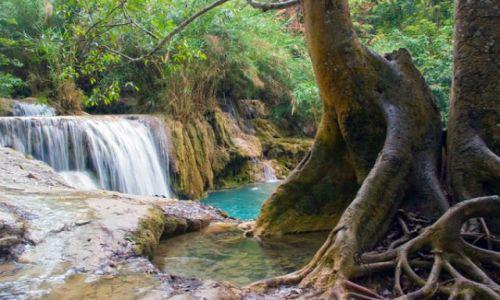 Zdjecie LAOS / brak / Wodospad KHOUANG SI / FOTO 7