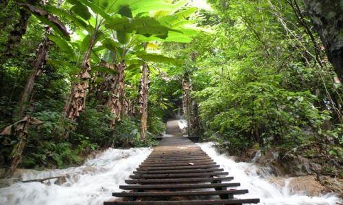 Zdjecie LAOS / brak / Wodospad Kuang Si / Schody do Nieba
