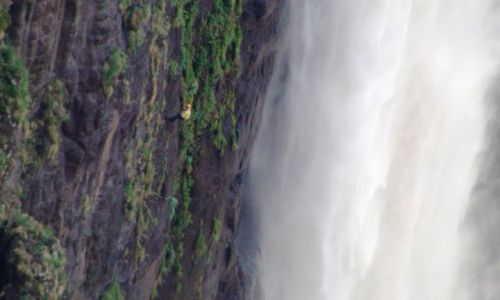 Zdjecie LESOTHO / Semonkong / Maletsunyane Falls / Co to jest: wisi na ścianie i ryczy? Dupa nie alpinista!