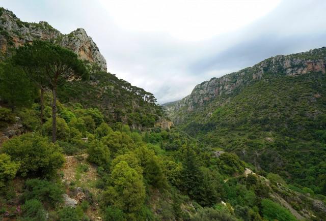 Zdjęcia: Qadisha Valley, Bcharre, Droga wśród cedrów, LIBAN