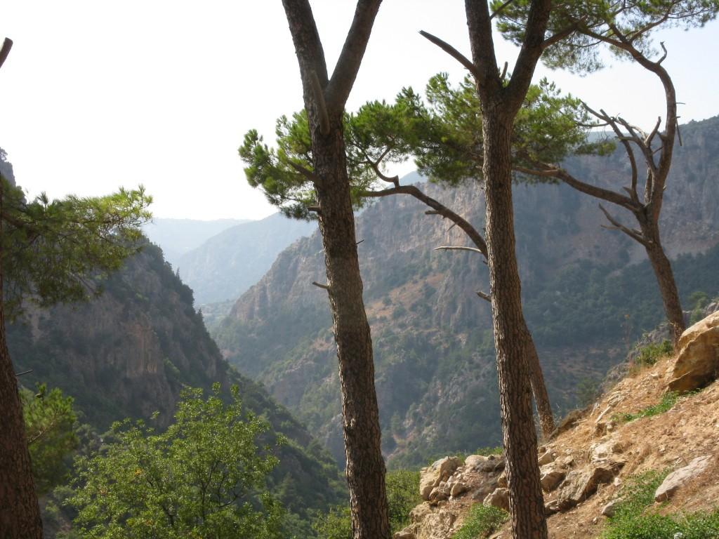 Zdjęcia: okolice Bejrutu, Święta Dolina -  Wadi Kadisza 3, LIBAN