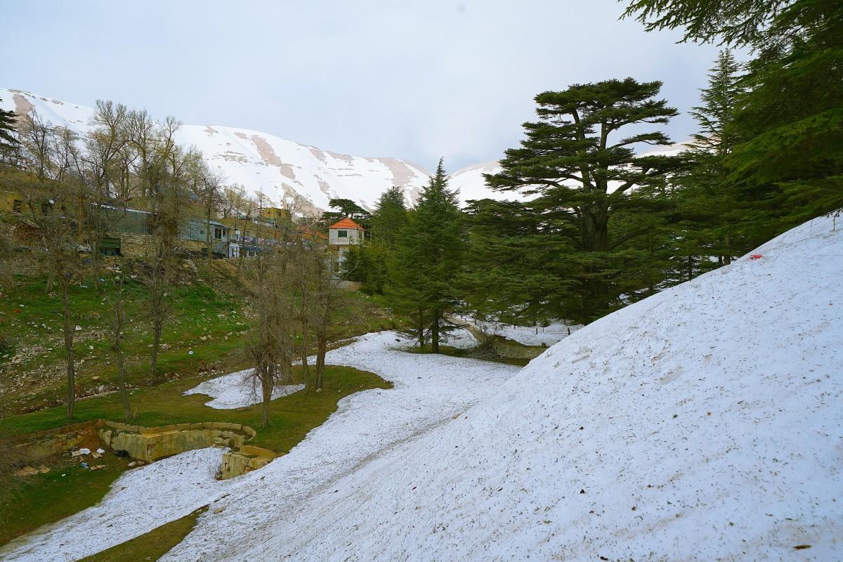 Zdjęcia: .., Liban Północny  , Wiosna w Bsharre, LIBAN