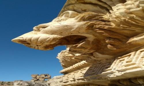 Zdjęcie LIBAN / Baalbek / Hellenistyczne miasto / Lew