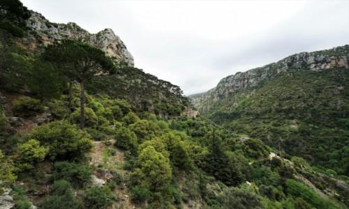 Zdjecie LIBAN / Bszarri / . / Dolina Kadisha w połowie drogi