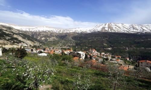 Zdjecie LIBAN / Bszarri / . / Kwitnące jabłonie
