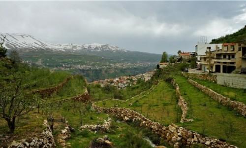 LIBAN / Liban Północny / Dolina Kadisha / Tarasowe uprawy