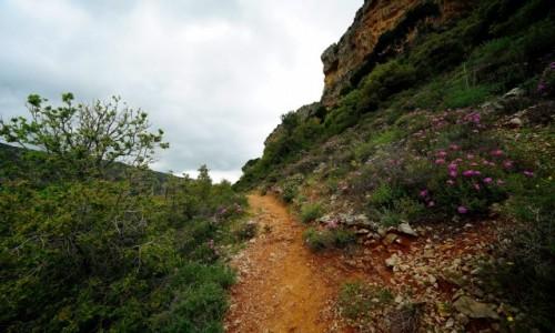 Zdjecie LIBAN / Bcharre / Qadisha Valley / W drodze