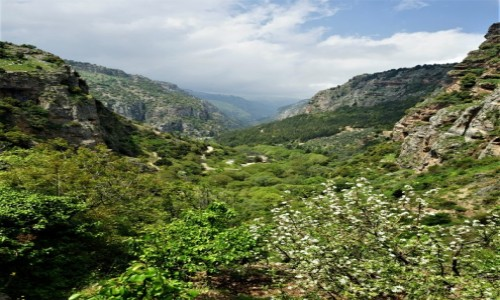 Zdjęcie LIBAN / Liban Północny /  Dolina Kadisha / 20 km do przejścia