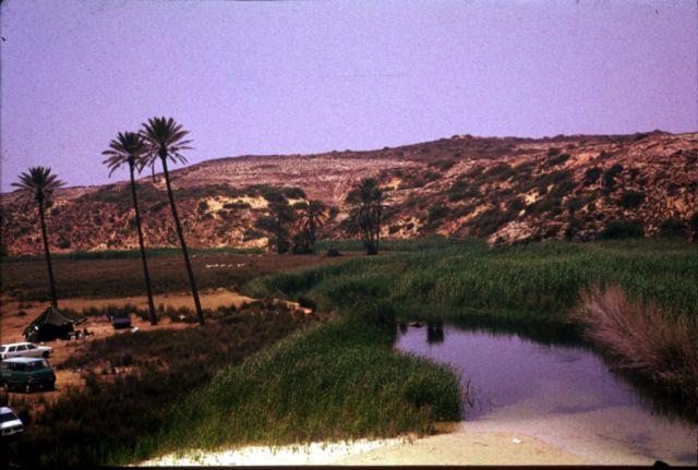 Zdjęcia: ok 60 km od Trypolisu, trypolitania, camping nad morzem, LIBIA