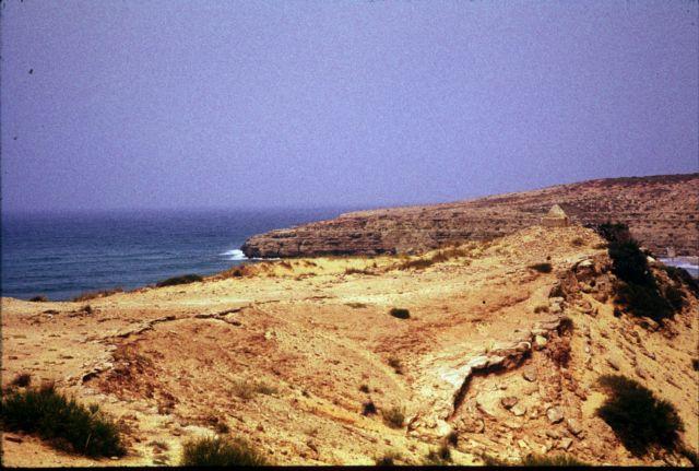 Zdjęcia: plaza na zachód od Trypolisu, trypolitania, marabut na cyplu, LIBIA