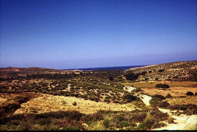 Zdjęcia: plaza na zachód od Trypolisu, trypolitania, widok na morze, LIBIA