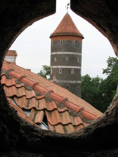 Zdjęcia: Raudań, Zamek Giełgudów (Panemune), LITWA