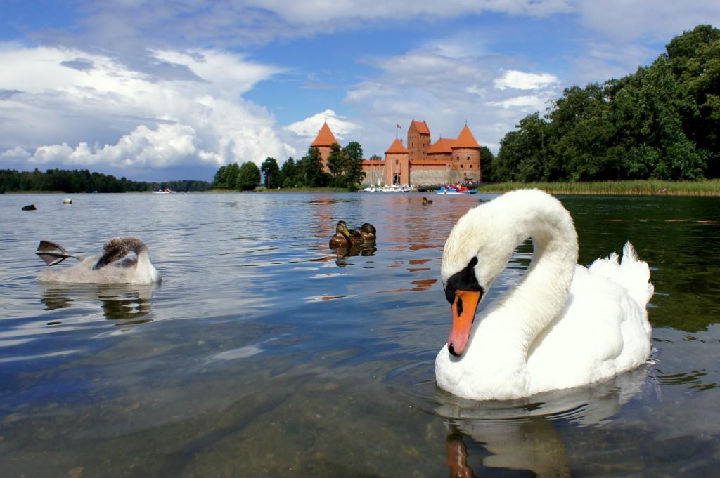 Zdjęcia: ., Troki, Zamek Księcia Witolda , LITWA
