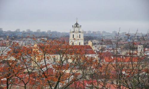 Zdjęcie LITWA / Wilno / Zamek / Wilno
