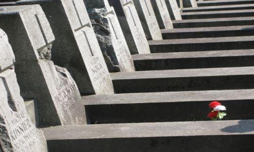 Zdjecie LITWA / Wilno / Cmentarz na Rossie / konkurs