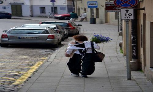 Zdjecie LITWA / --- / Wilno / Ulica