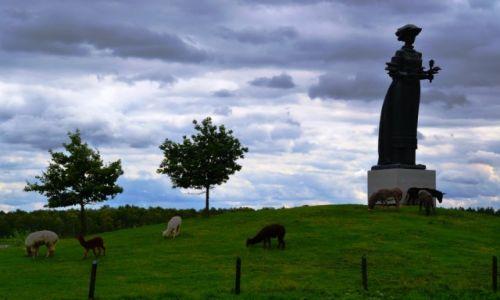 Zdjęcie LITWA / olicki / Gruto Parkas / Park pomników