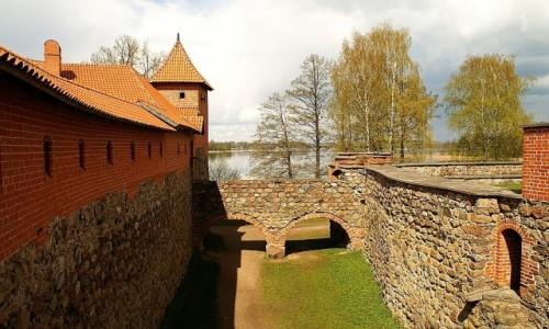 Zdjecie LITWA / okolice Wilna / Troki / zamek na wyspie