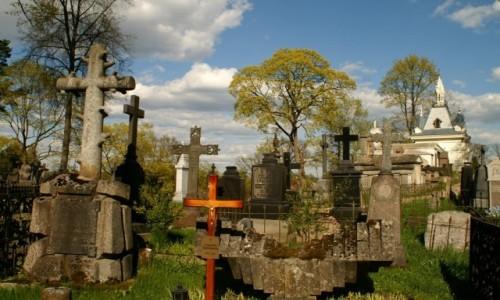 Zdjęcie LITWA / WIlno / Wilno / cmentarz na Rossie