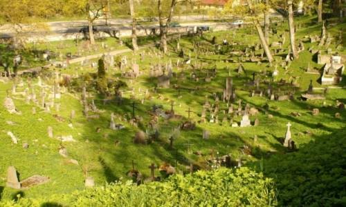 Zdjecie LITWA / WIlno / Wilno / cmentarz na Ros