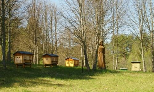 Zdjęcie LITWA / Auksztocki Park Narodowy / Stripeikiai / Muzeum Pszczelarstwa