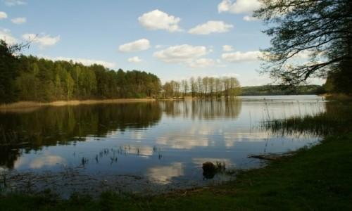 Zdjecie LITWA / Auksztocki Park Narodowy / okolice Ignalina / pojezierze auksztockie