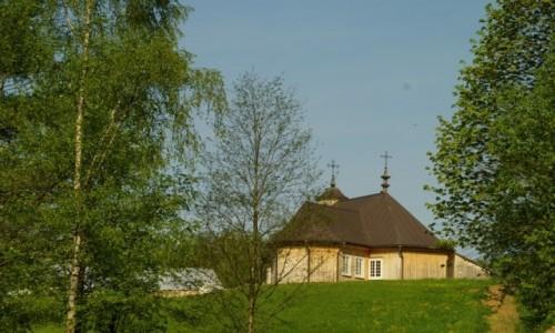 Zdjęcie LITWA / okolice Kowna / Rumszyszki / skansen wsi litewskiej
