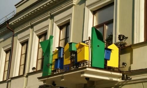 Zdjęcie LITWA / Kowno / Kowno / Vilniaus gatve