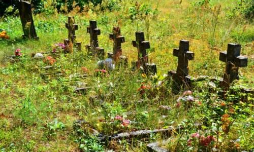 Zdjęcie LITWA / Rejon Orański / Maskauka / Zapomniany cmentarz
