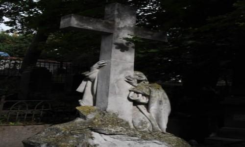 Zdjecie LITWA / Pojezierze Wileńskie / Wilno / Wilno, cmentarz bernardyński