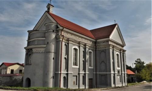 Zdjecie LITWA / Pojezierze Wileńskie / Wilno / Wilno, Kościół św. Szczepana