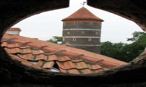 LITWA / brak / Raudań / Zamek Giełgudów (Panemune)