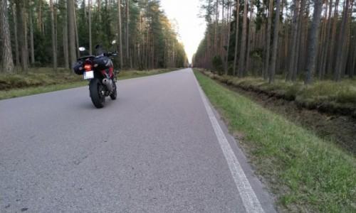 Zdjecie LITWA / Wilno / Wilno / 1