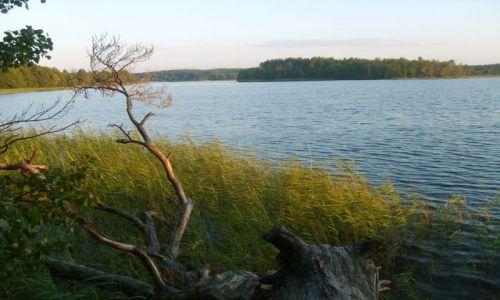 Zdjęcie LITWA / Auksztota / Pojezierze Auksztockie / litewskie krajobrazy