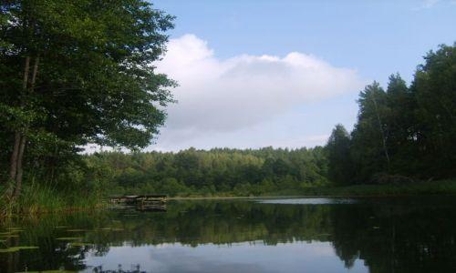 Zdjęcie LITWA / Auksztota / Pojezierze Auksztockie / Kraina jezior