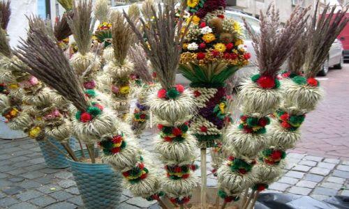 Zdjecie LITWA / Wileńszczyzna / WILNO / Tradycyjne palmy