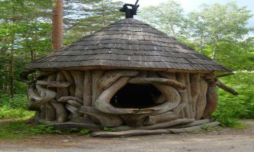 Zdjecie LITWA / Drusienniki / Muzeum leśnictwa