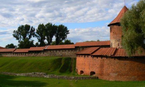 Zdjecie LITWA / Kowno / Kowno / Kowno - Zamek nad Niemnem